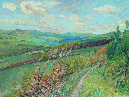 Towards upper Wensleydale, ,May, from the Plum Tree by